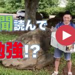大きな木の下で、新聞読んで勉強!?
